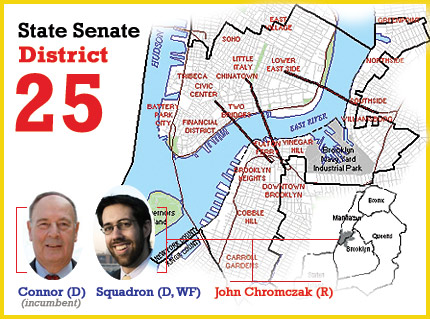 new york senate district 25 Martin Connor and Daniel Squadron