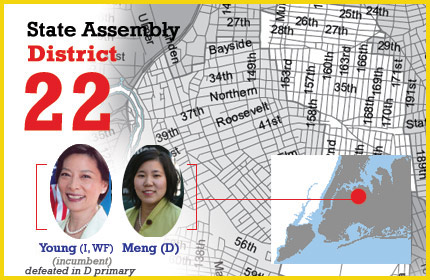 New York State Assembly District 22