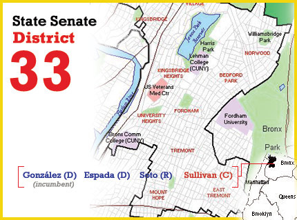 ny state senate district 33