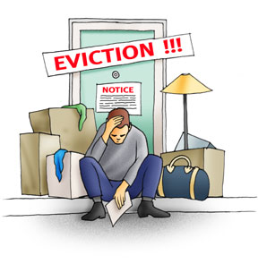 The Brown Couch No Cause For Evictions