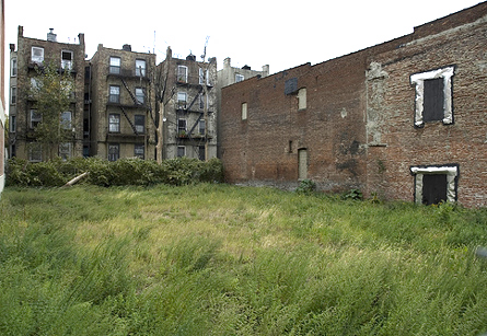 Photo of Vacant Lot