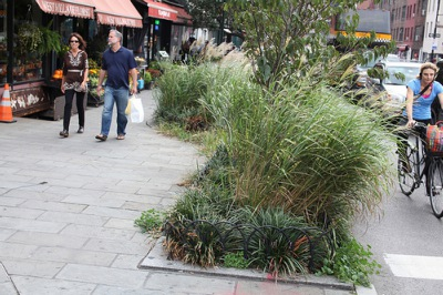 Bioswales like this one on Seventh Avenue in Manhattan absorb water during storms.