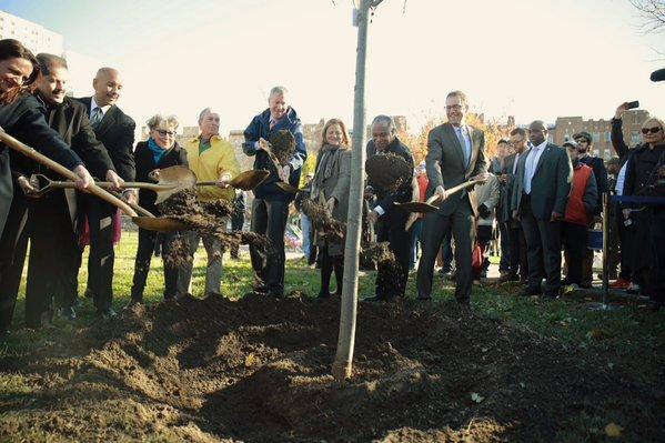 tree planting ceremony via NYC Council