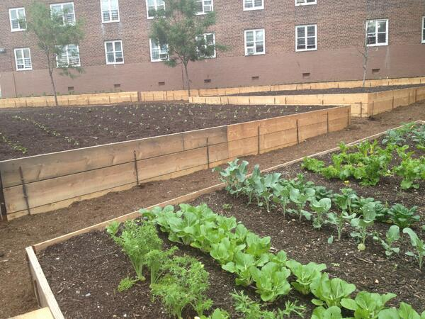 urban farm via nycfood