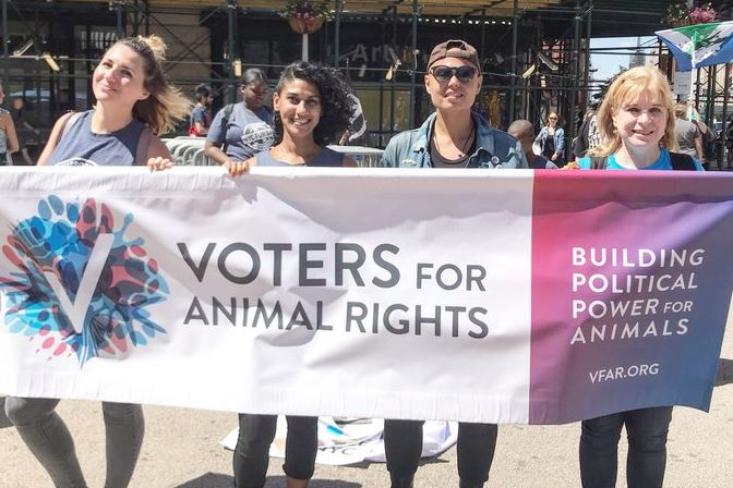 animal rights histor