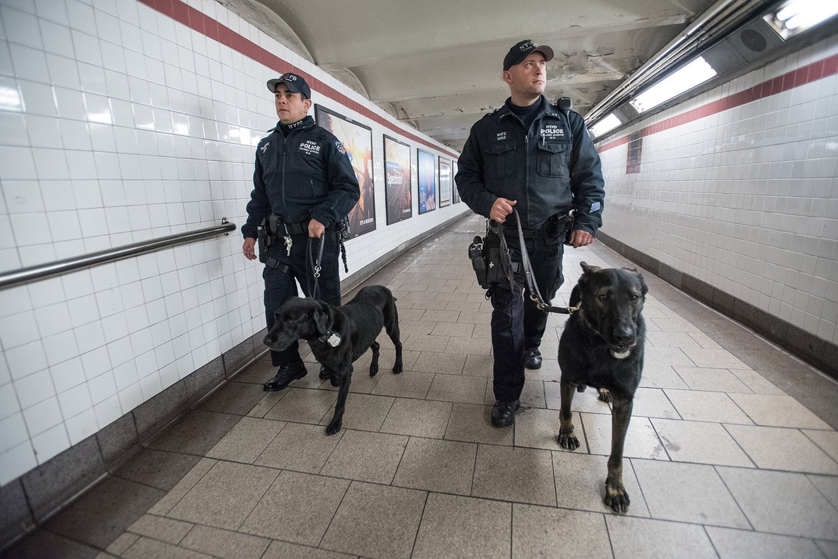 nypd cops dogs subway