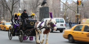 Just as Other Places Have Done, New York City Can Preserve Jobs and Tradition with Electric 'Horseless' Carriages