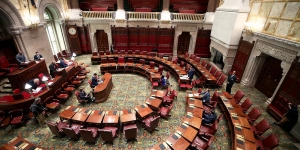 The State Legislature in a State of Emergency